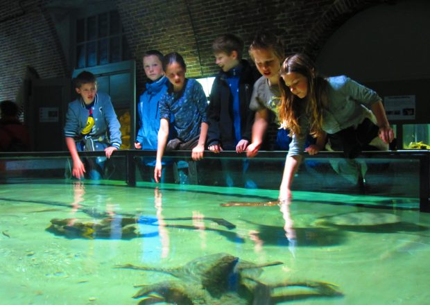 aquarium fort kijkduin